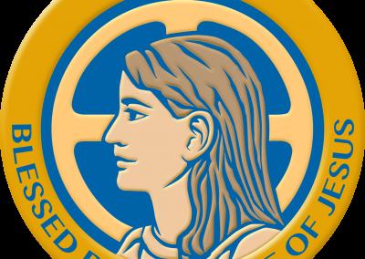 NAHNS logo-2017-4